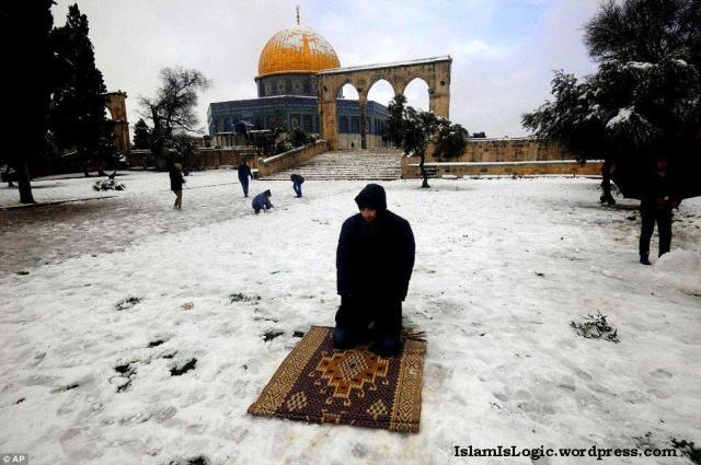 Salju 2013 di Arab 01