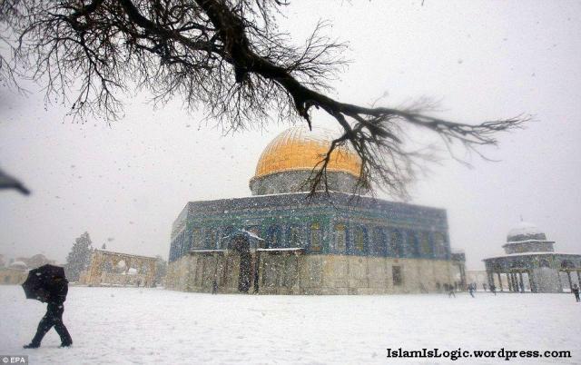 Salju 2013 di Arab 04