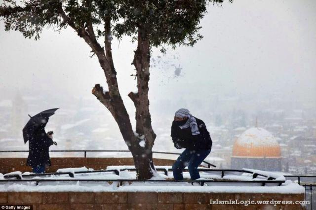 Salju 2013 di Arab 06