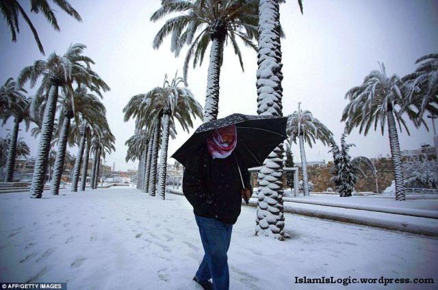 Salju 2013 di Arab 10