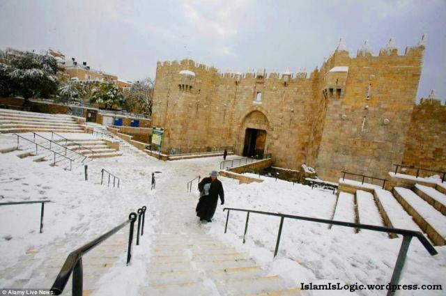 Salju 2013 di Arab 12