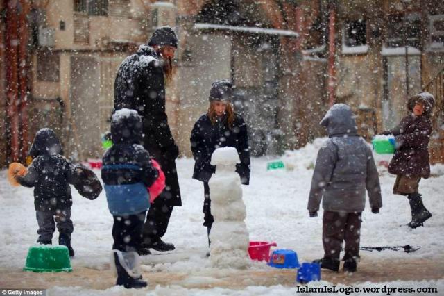 Salju 2013 di Arab 21