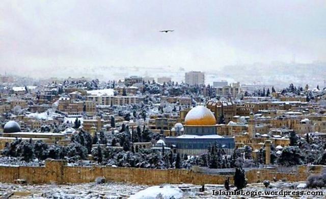 Salju 2013 di Arab 28